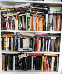Overstuffed Bookshelf